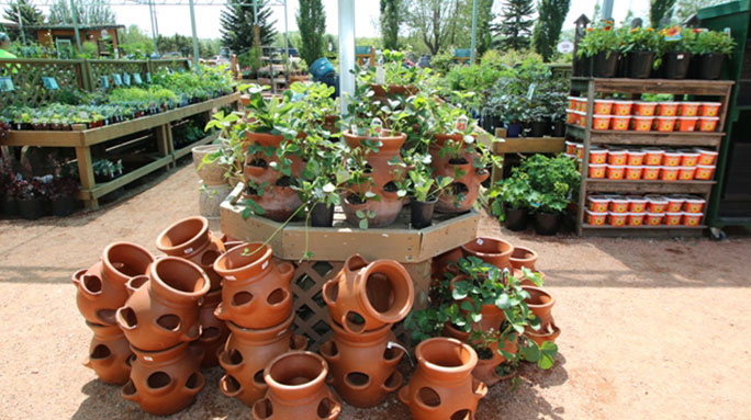 Herb or Strawberry Planters